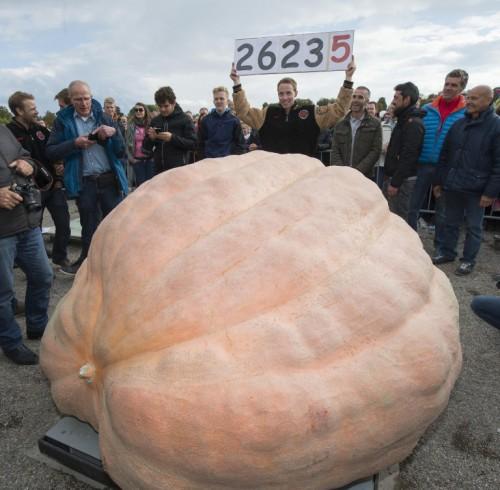 101016_pumpkin