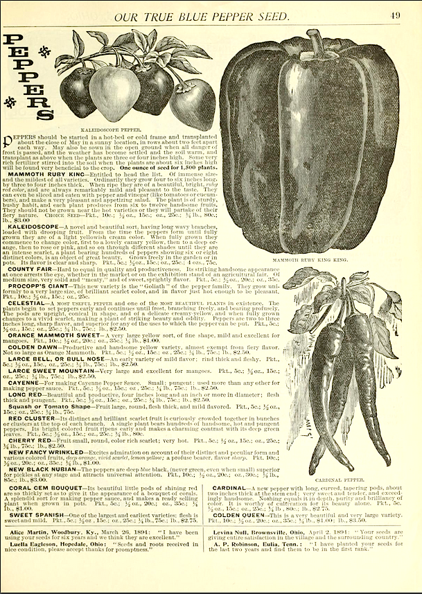 Livingston's Seed Company Catalog Pepper Page, 1895
