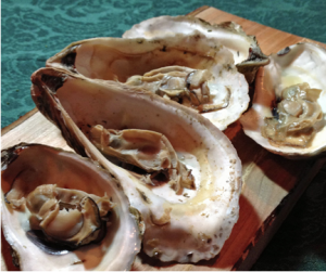 Grilled Oysters with Spicy Mignonette Sauce