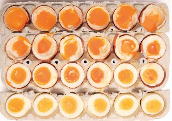 Egg Tes