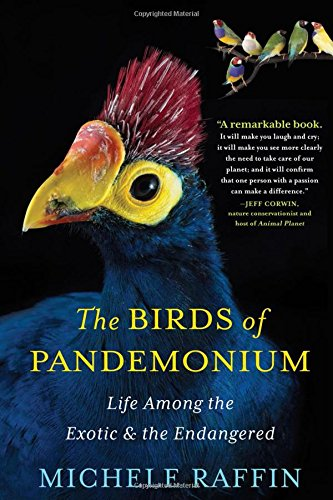 Birds of Pandemonium