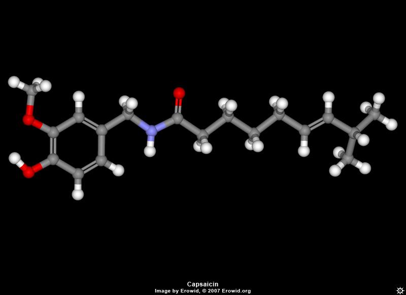 Capsaicin Molecule in 3-D
